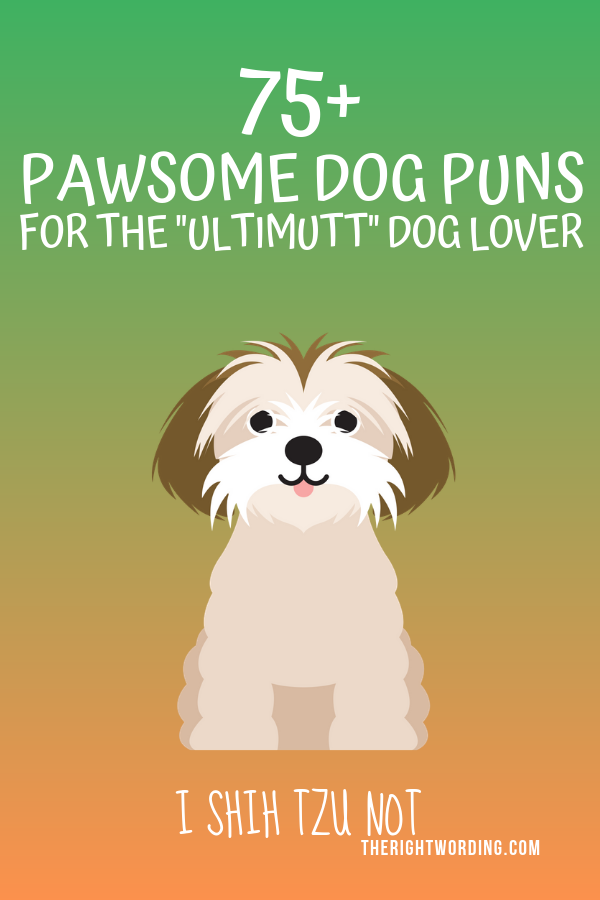"Pawsome Dog Puns and Jokes For The ""Ultimutt"" Dog Lover #pun #puns #dogpuns #doglover #dogjokes"