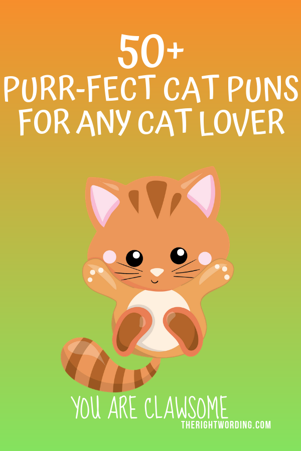 50+ Hiss-terically Purr-fect Cat Puns For Any Cat Lover 11