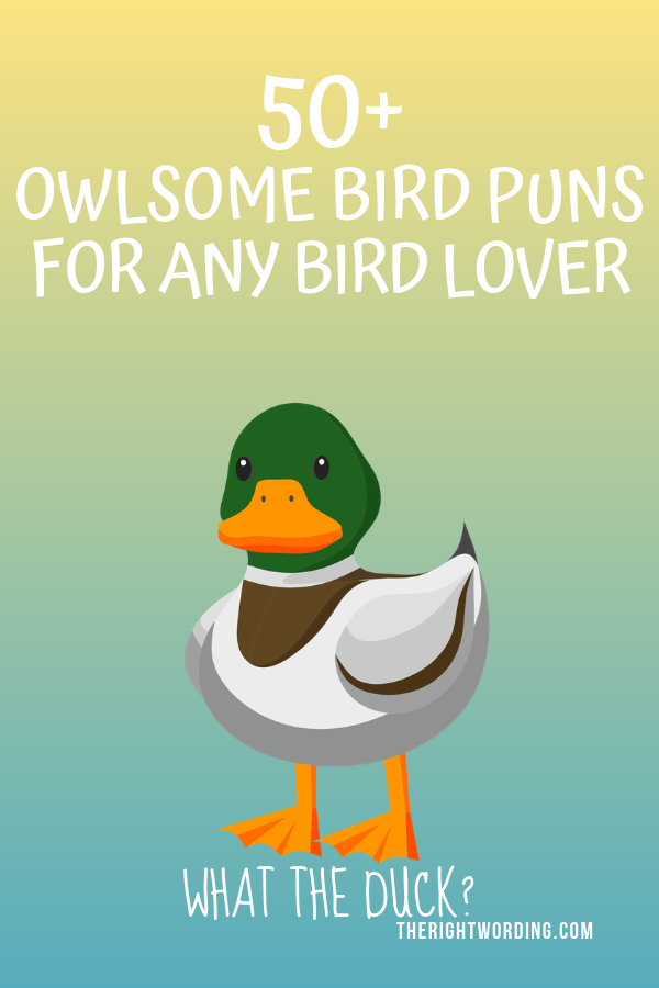 Owlsome Bird Puns To Emu-se Your Friends