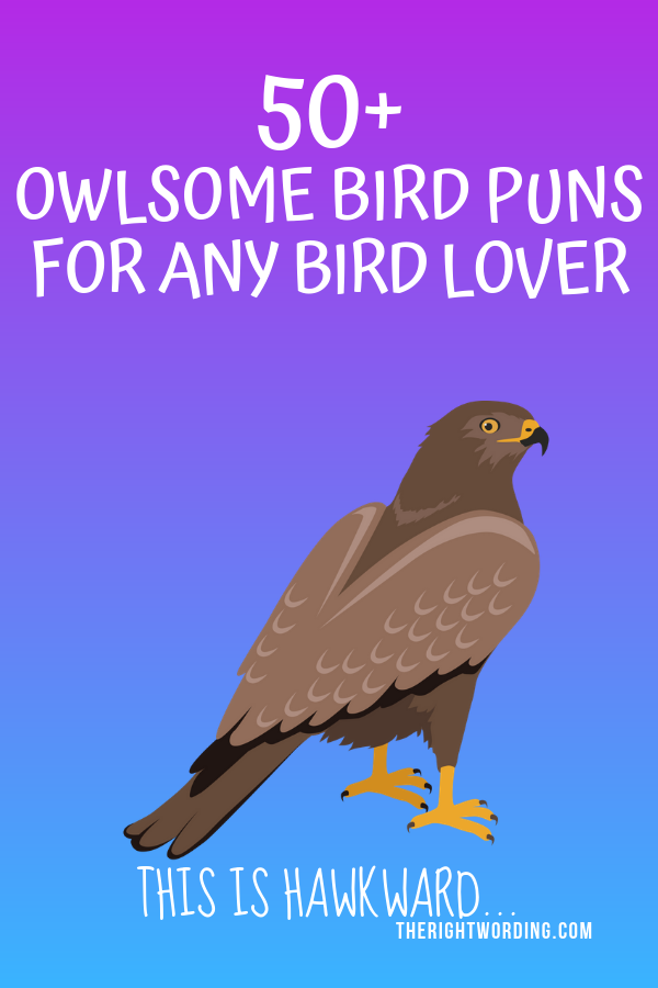 Owlsome Bird Puns To Emu-se Your Friends #birdpuns #birdjokes #puns #jokes #ilovebirds
