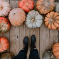 Best Pumpkin Puns And Quotes To Make You The PUN KING